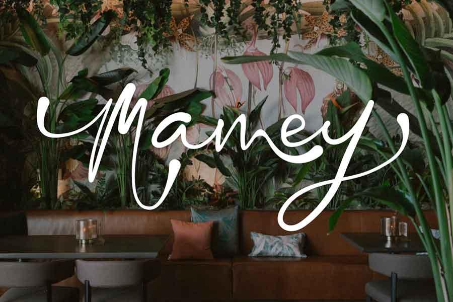 Mamey Miami